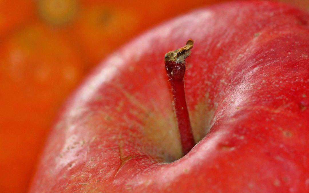 Bio-Importe: Pesitizide oft aus China