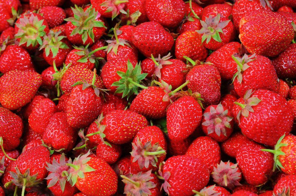 Erdbeeren: Pestizide statt Bio