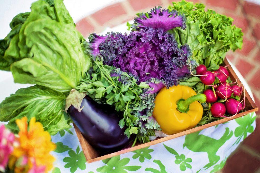 Ein Drittel aller Lebensmittel landet im Müll
