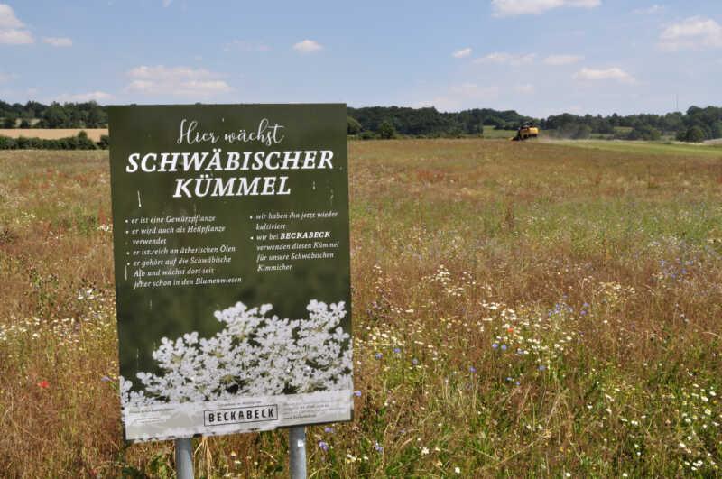 Biohof Jungbauer