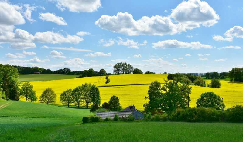 Zwölf Prozent mehr für Bio-Landwirte